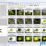 FastStone Image Viewer  2