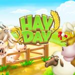 Hay Day  3